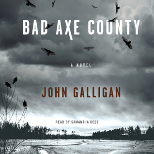 John Galligan: Bad Axe County
