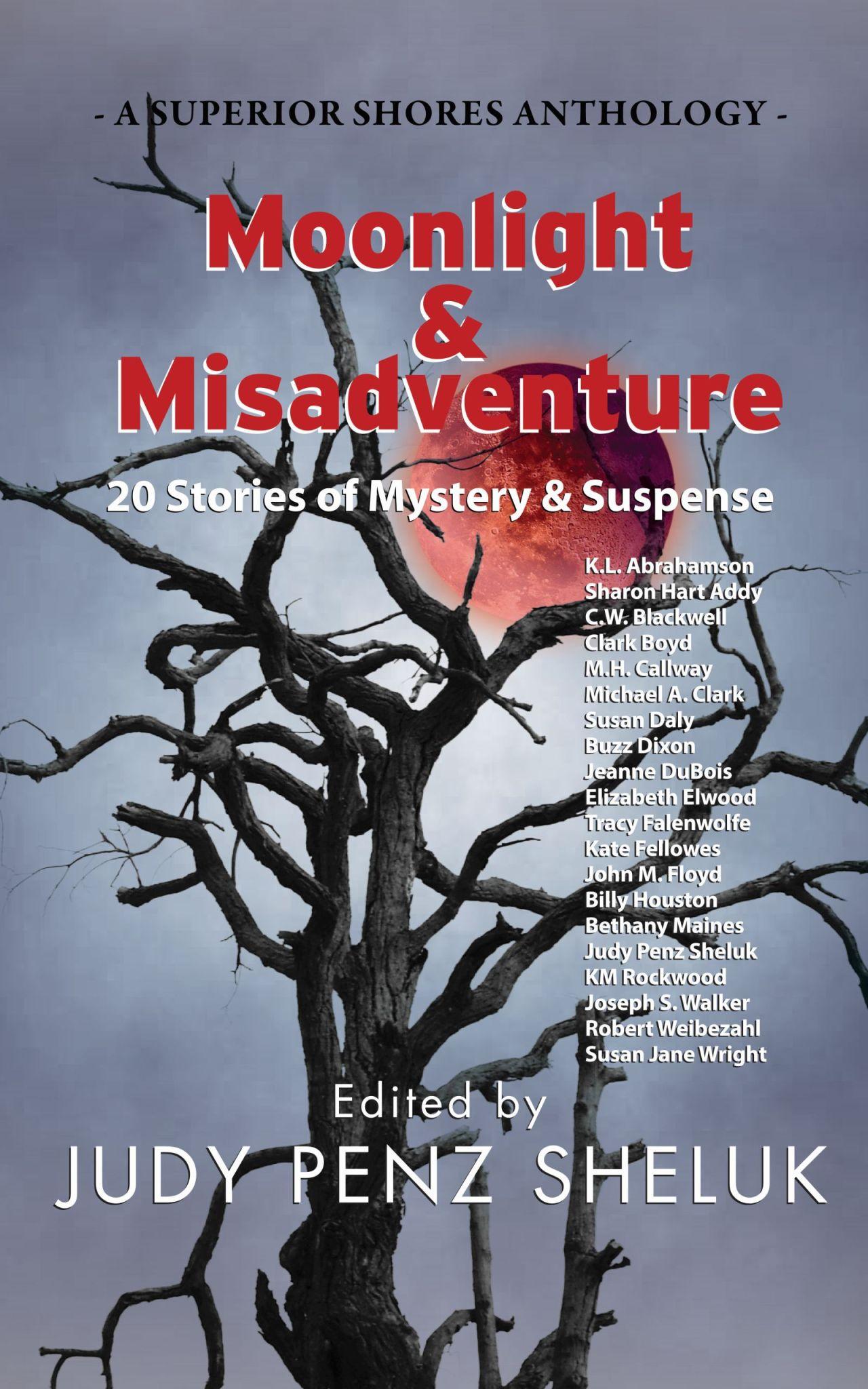 Moonlight & Misadventure