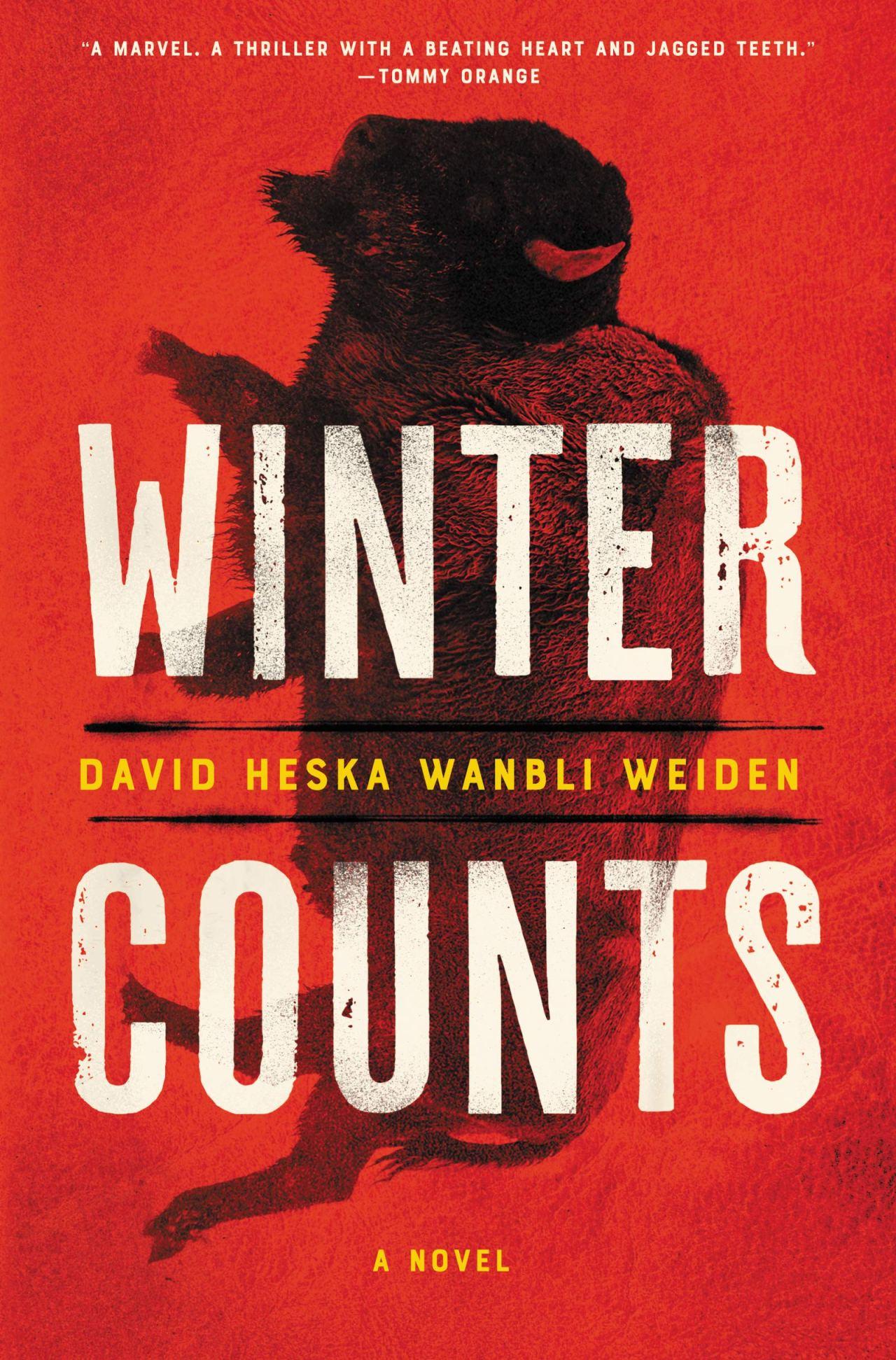 David Heska Wanbli Weiden: WinterCounts